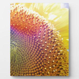 jazzy sunflower plaque
