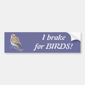Je freine pour des oiseaux - aquarelle de crécerel autocollant de voiture