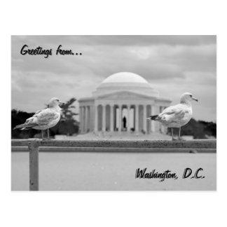 Jefferson Memorial / Tidal Basin Postcard