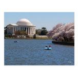 Jefferson Memorial Washington DC Postcards