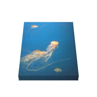 Jelly Fish Canvas Art