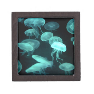 jelly fish glowing premium trinket box