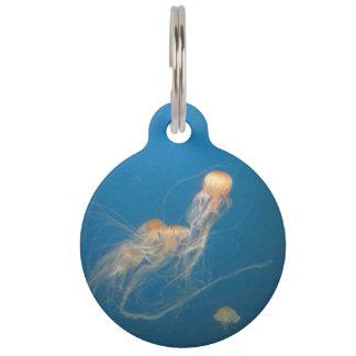 Jelly Fish Pet Tag