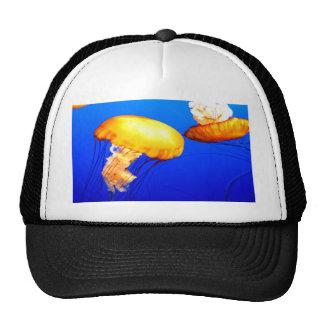 jellyfish blue marine peace and joy hats