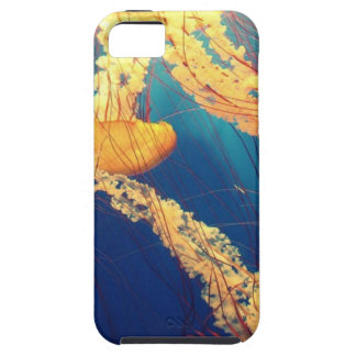 Jellyfish Illustration iPhone 5 Covers