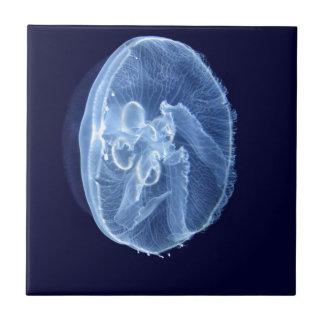Jellyfish Tiles