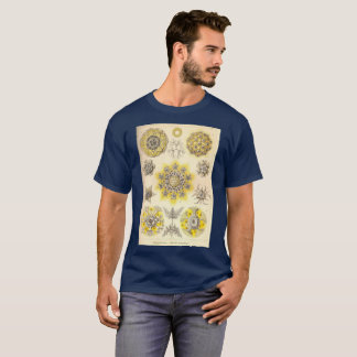 jellyfish vintage T-shirt old school ernst haeckel