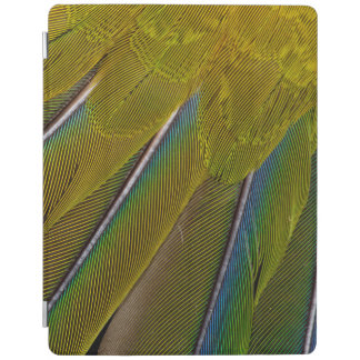 Jenday Conure Feather Design iPad Cover