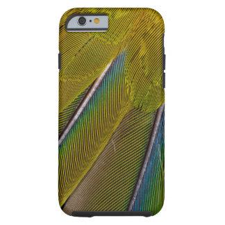Jenday Conure Feather Design Tough iPhone 6 Case