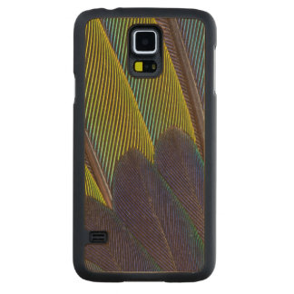 Jenday Conure Feather Detail Carved Maple Galaxy S5 Case
