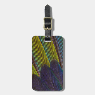 Jenday Conure Feather Detail Luggage Tag