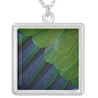 Jenday Conure feathers Silver Plated Necklace