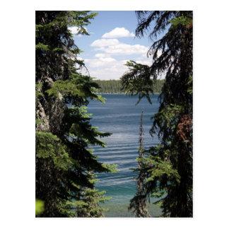 Jenny Lake, Wyoming Postcard