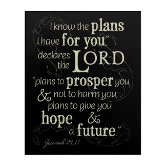 Jeremiah 29:11 I know the plans I have for you... Acrylic Wall Art