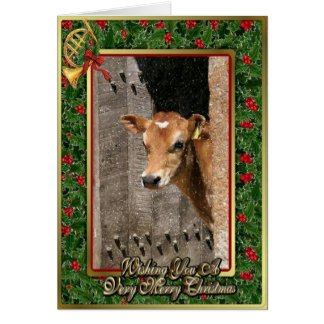 Jersey Dairy Calf Blank Christmas Card
