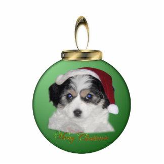 Jersey Santa Ornament Photo Sculpture Ornament