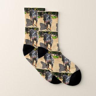 Jessie Blue Heeler Unisex Socks