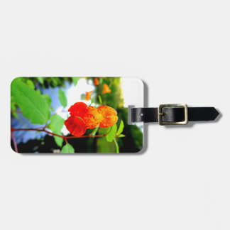 Jewelweed Flower Close-Up Luggage Tag