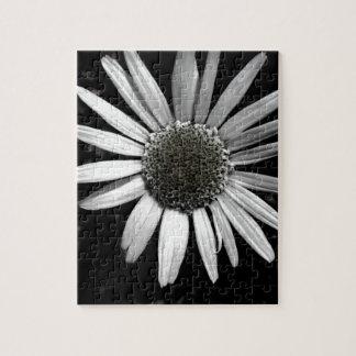 jigsaw puzzle daisy black and white  photo art