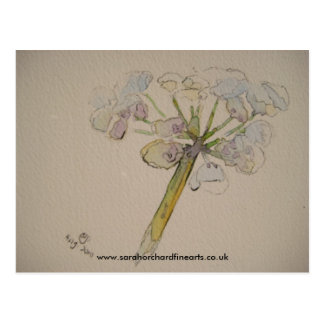 Jigsaw series - Cow parsley  2010 Postcard