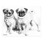 JillyJax Pug Cards & Postage Post Cards