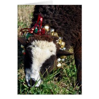 Jingle Bell Lamb, Merry Christmas Greeting Card