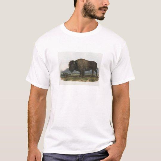 JJ Audubon - American Bison T-Shirt