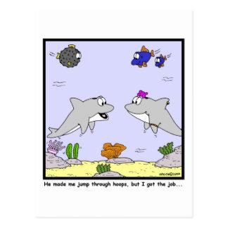 Job Interview: Dolphin cartoon Postcard