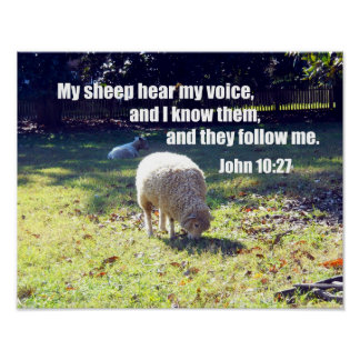 John 10:27 poster