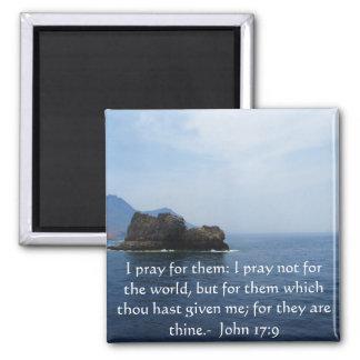 John 17:9 I pray for them: I pray not for the... Magnet