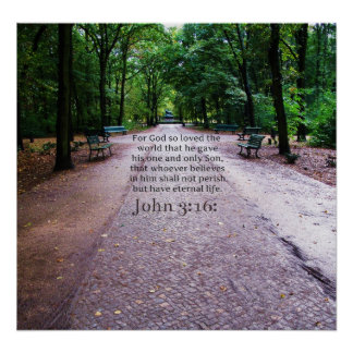 John 3:16: Inspirational Biblical quote NATURE Poster