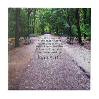 John 3:16: Inspirational Biblical quote NATURE Tile