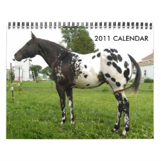 JOHN AND MARIE CRAIG'S FAMILY APPALOOSAS WALL CALENDARS