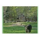 John Oliver Cabin Postcard