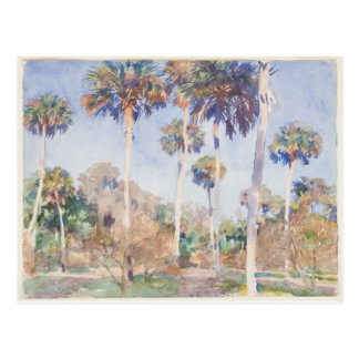 John Singer Sargent Watercolor - Palms Postcard