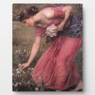 John William Waterhouse - Narcissus - Fine Art Plaque