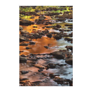 Johnson County, Leawood, Tomahawk Creek Gallery Wrapped Canvas