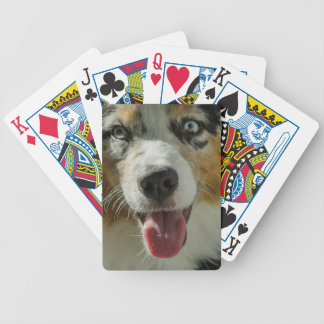 Joker Boy Poker Deck