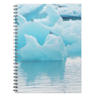 Jökulsárlón terns spiral notebook