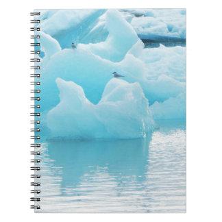 Jökulsárlón terns spiral notebook