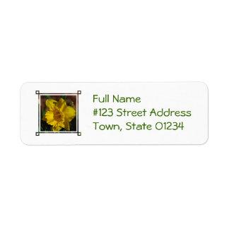 Jolie jonquille étiquettes d'adresse retour