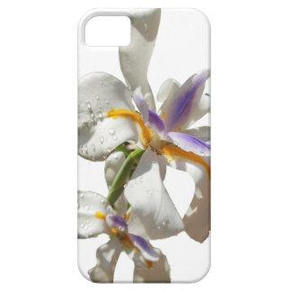 Jolis blanc et pourpre d'iris étuis iPhone 5