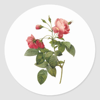Jolis roses autocollant