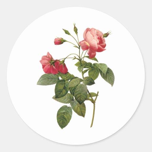 Jolis roses adhésifs ronds