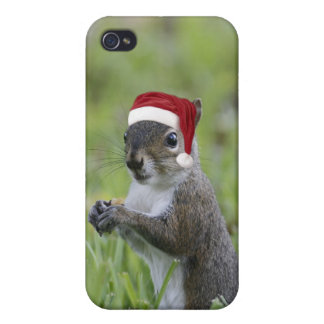 Jolly Santa Squirrel Fun Christmas Holiday Covers For iPhone 4