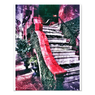 Jones Street Stairway, Savannah Photo Print