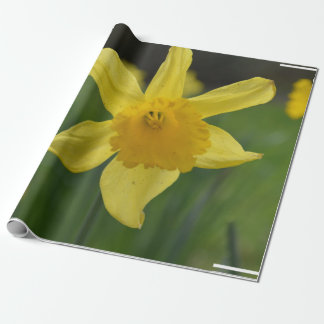 Jonquil Wrapping Paper