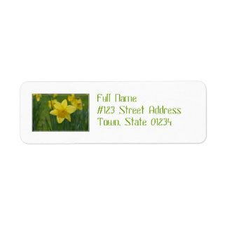 Jonquille assez jaune étiquette d'adresse retour