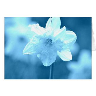 Jonquille blanche florale carte de vœux
