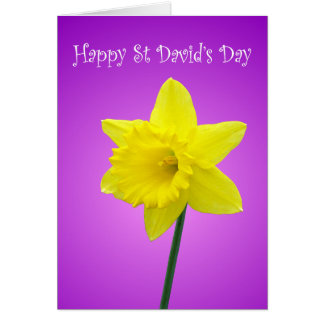 Jonquille de Gallois de jour de St Davids Carte De Vœux